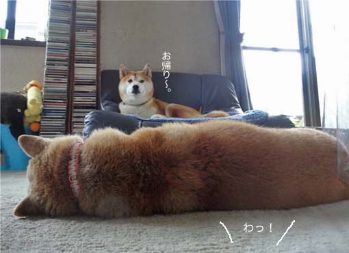 25日ブログ7.jpg