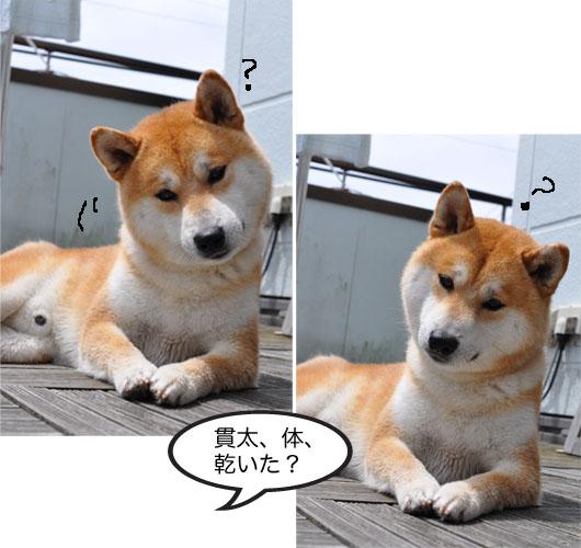 27日ブログ10.jpg