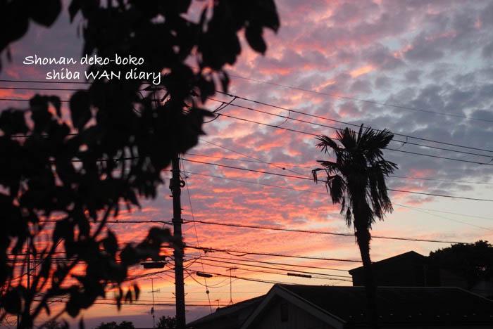 22日午前ブログ1