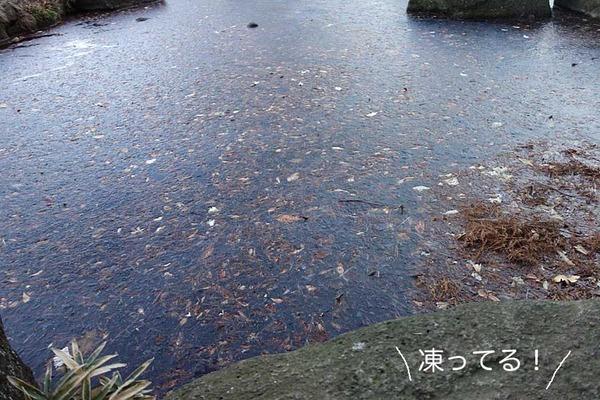 12日朝ブログ1