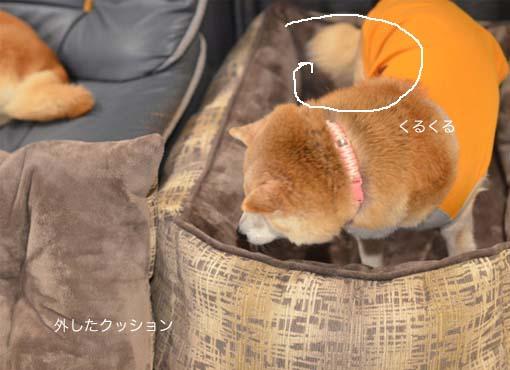 22日ブログ9.jpg