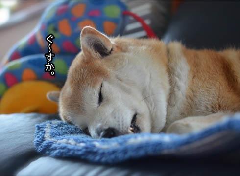 29日ブログ13.jpg