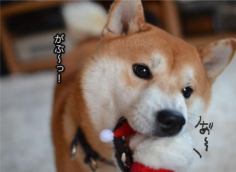 22日ブログ8.jpg