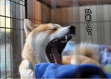 31日ブログ3.jpg