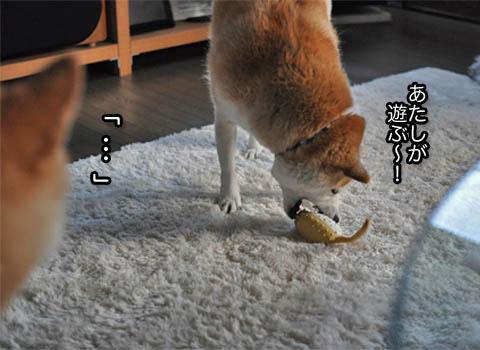 22日ブログ7.jpg