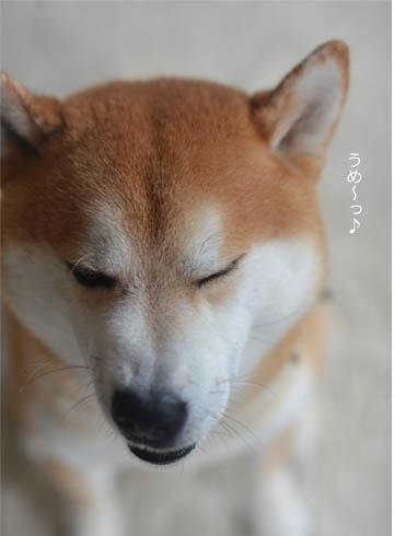 23日ブログ7.jpg