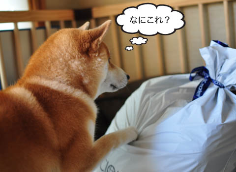 24日ブログ3.jpg