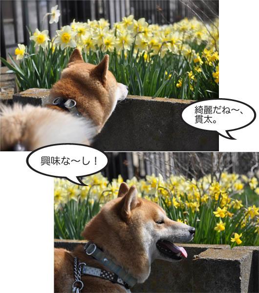 4日ブログ2.jpg