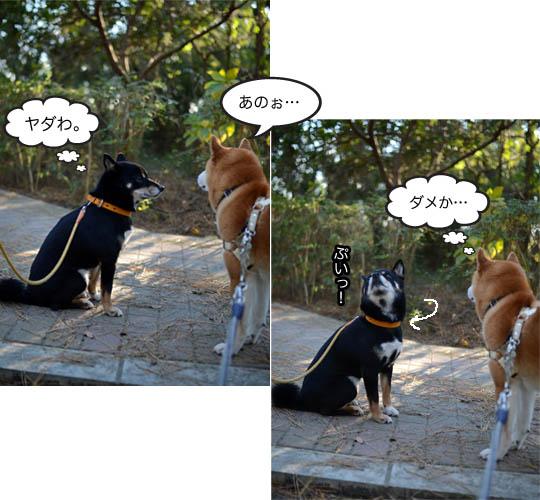10日ブログ10.jpg