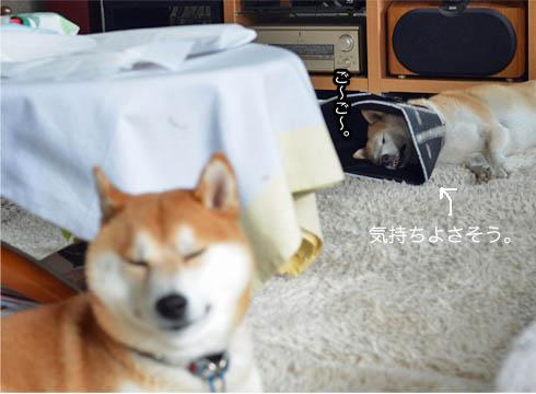 25日ブログ8.jpg