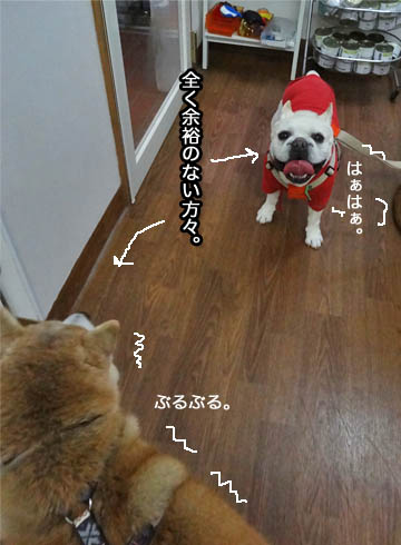 31日ブログ2.jpg