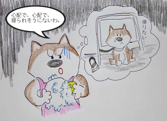 27日ブログ10