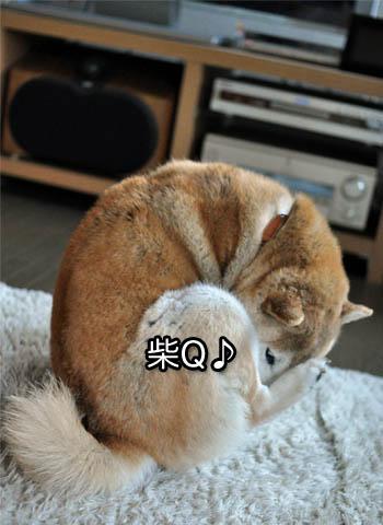 3日ブログ9.jpg