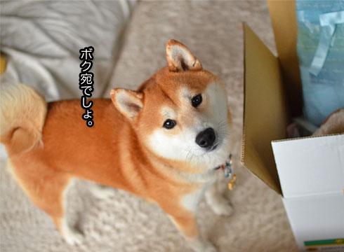 23日ブログ4.jpg