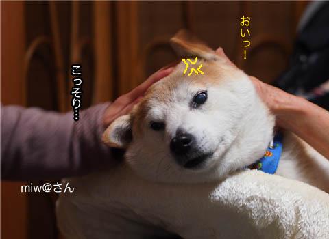 29日ブログ12.jpg