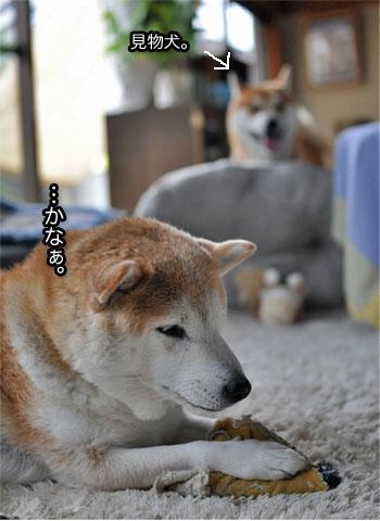 14日ブログ4.jpg