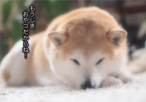 27日ブログ7.jpg