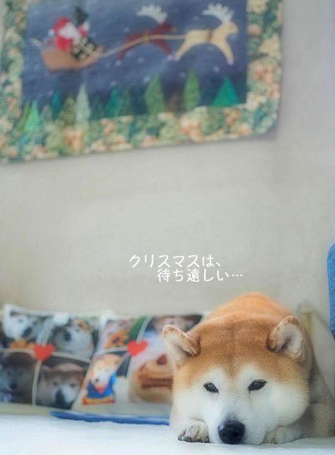 13日朝ブログ1