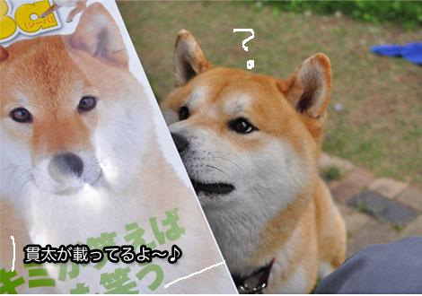 30日ブログ7.jpg