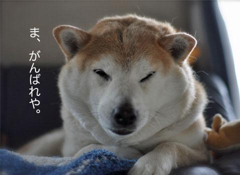 22日ブログ13.jpg