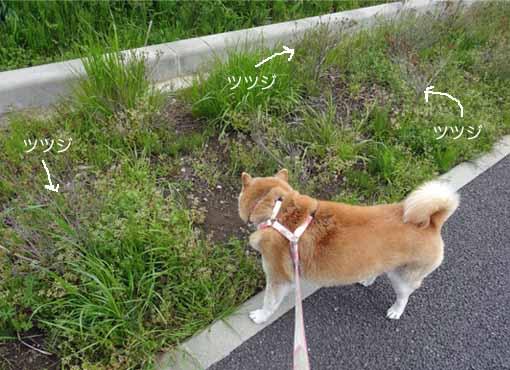 22日ブログ4.jpg