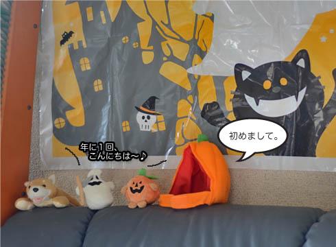 26日ブログ5.jpg