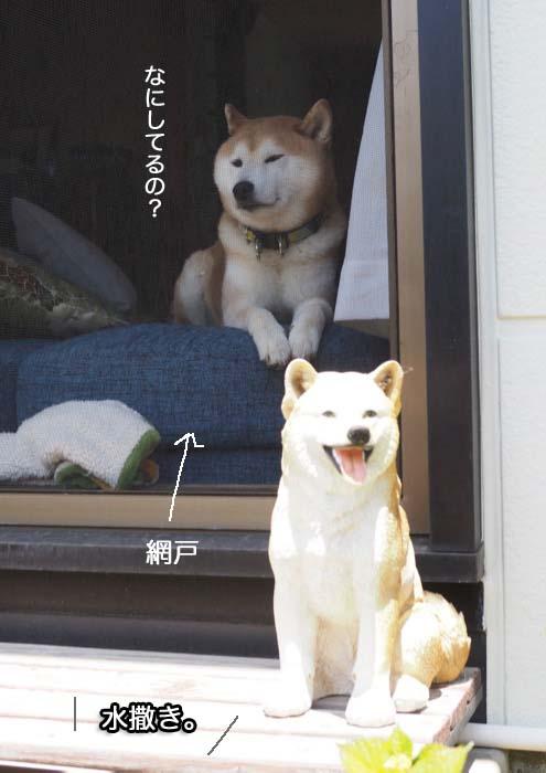 18日夕ブログ2