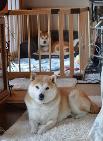 9日ブログ11.jpg