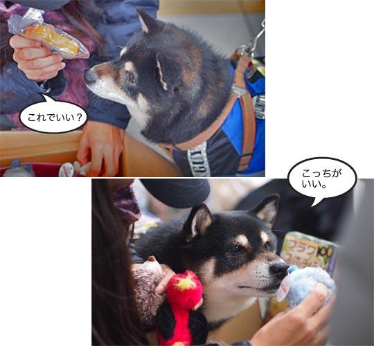 23日ブログ10.jpg