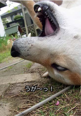 29日ブログ21.jpg
