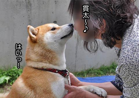 28日ブログ7.jpg