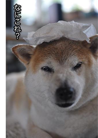 22日ブログ12.jpg