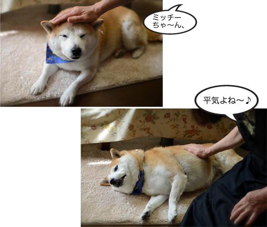 29日ブログ10.jpg