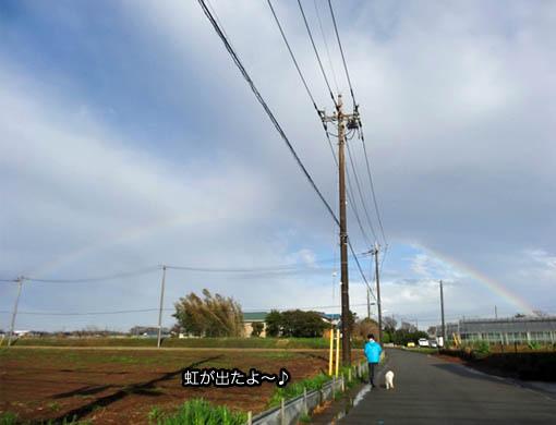 31日ブログ8.jpg