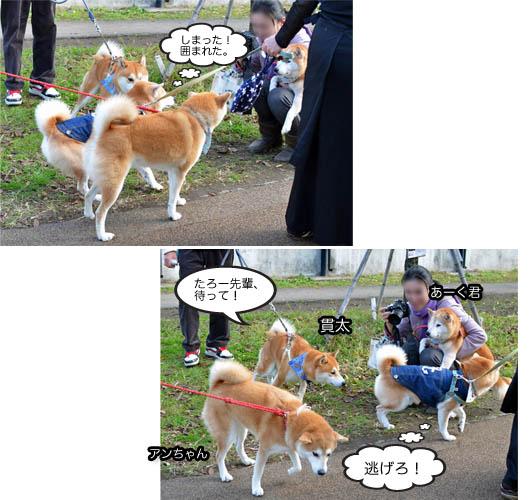 26日ブログ14.jpg