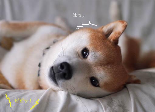 6日ブログ8.jpg