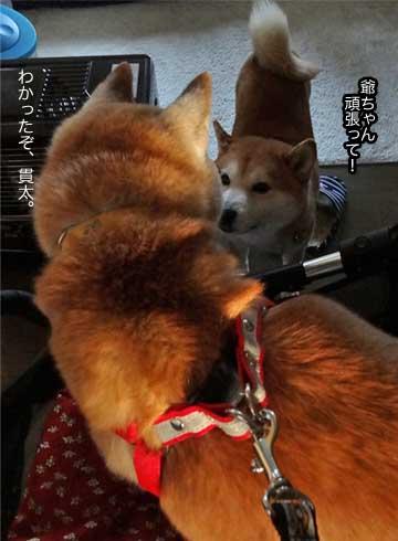 5日ブログ4.jpg