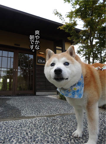 21日ブログ3.jpg