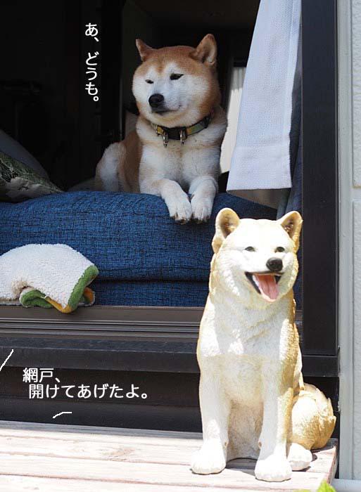 18日夕ブログ3