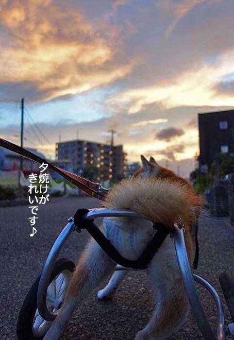 25日夜ブログ2