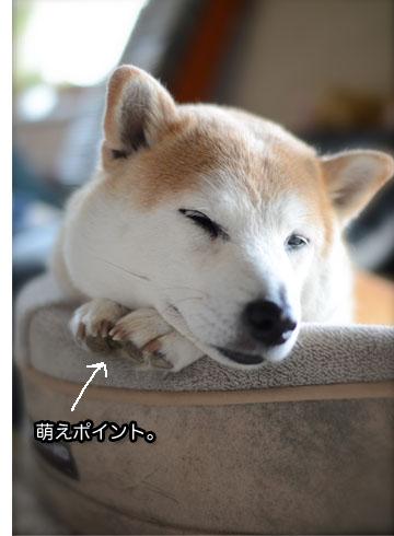 23日ブログ8.jpg