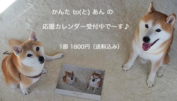 15日ブログ4