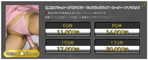 myfera_system04