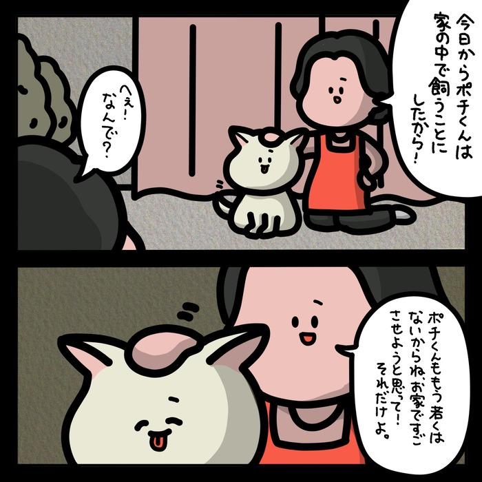 IMG_2914