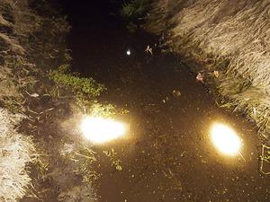 夜の用水路