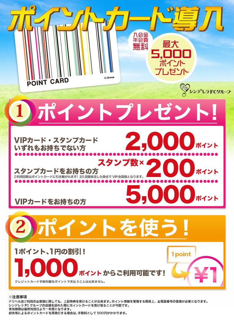 point_info_01