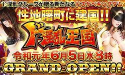 王国オープンバナー