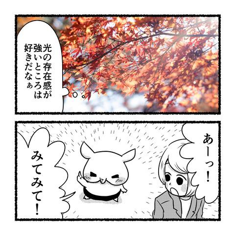 autumn-star_002