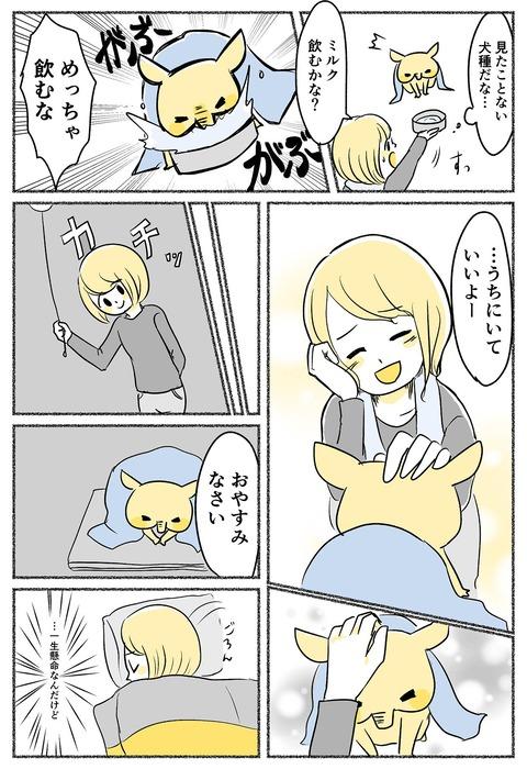 yumenoko-1st_005