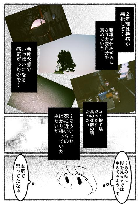seimeiryoku-4